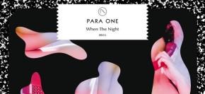 ParaOne2012_650x300