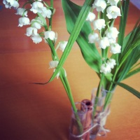 photo-95