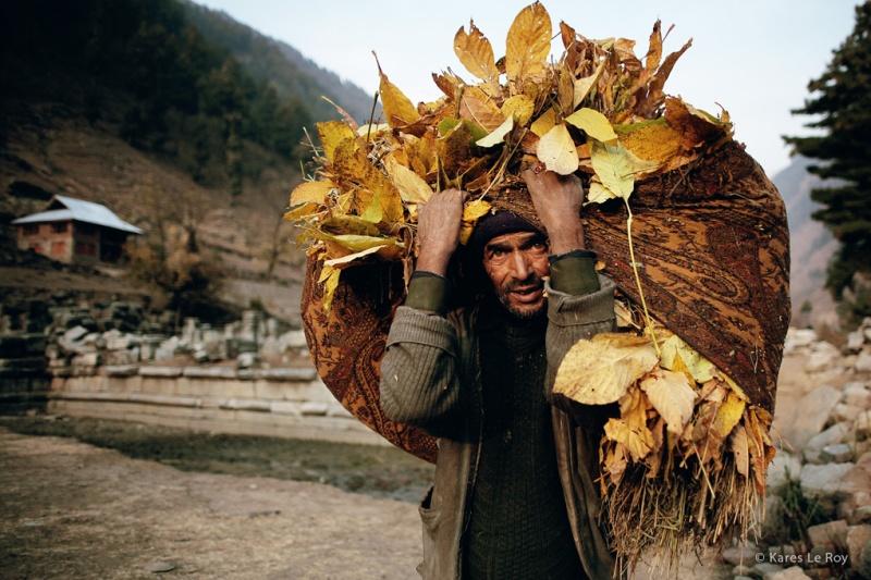 KaresLeRoy_Naraynag_Cachemire